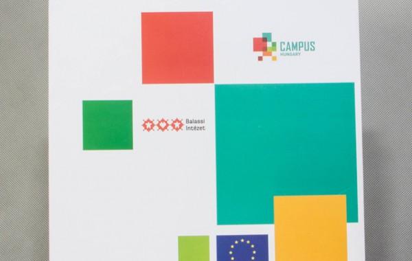 24 × 10 × 35 cm, Campus